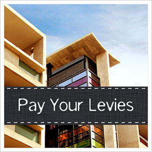 strata pay your levies
